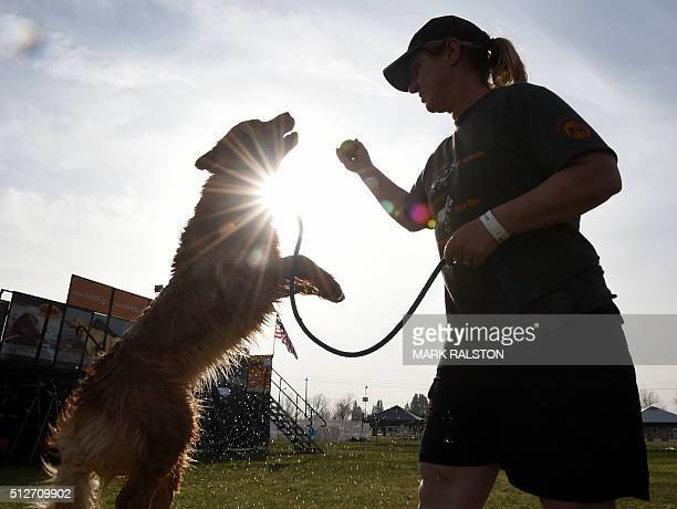 Teena Uyeno plays with her dog 'Ellie' during the Dock Dogs West Coast Challenge in Bakersfield California on February 26 2016 The current world...