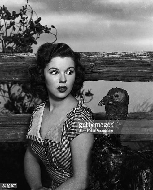 Teenage actress Shirley Temple poses as a country girl in a gingham frock but is unprepared for the arrival of a curious turkey