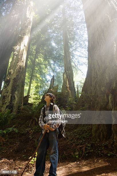 Teenage boy in forest with rays of sunlight