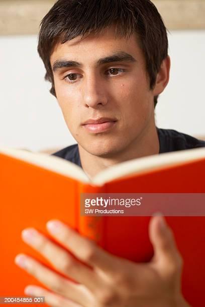 Teenage boy (16-18) reading book
