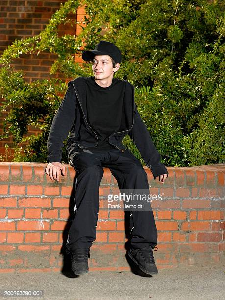 Teenage boy (13-15) sitting on wall, smiling