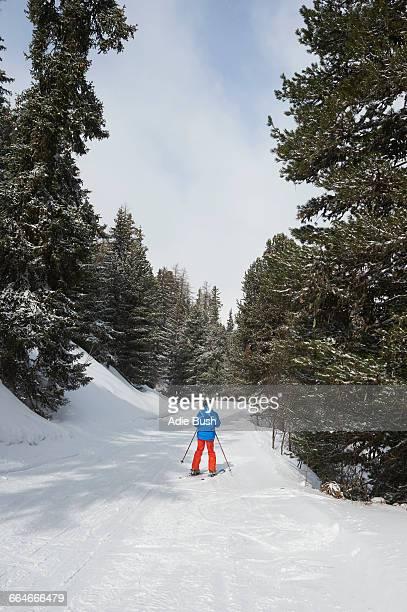 Teenage boy skiing, rear view