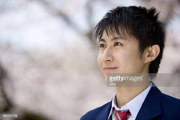 Teenage boy standing under cherry trees, looking away, side view, Japan