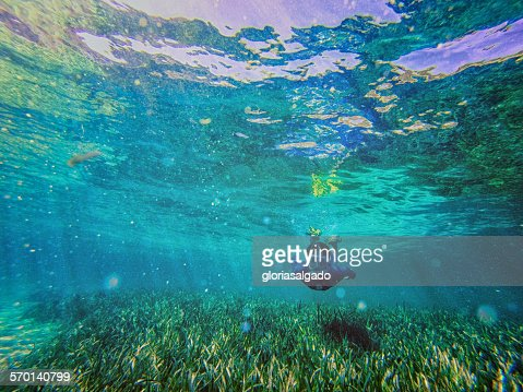 Teenage boy swimming with snorkel underwater, Rottnest, Australia