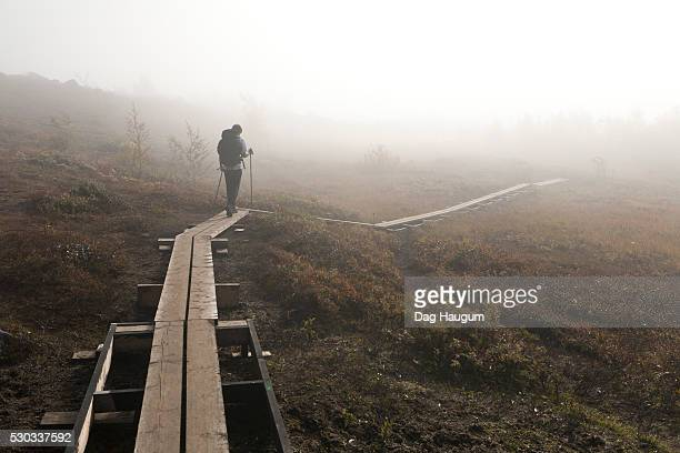 teenage boy walking on wooden trail - swedish lapland stock photos and pictures