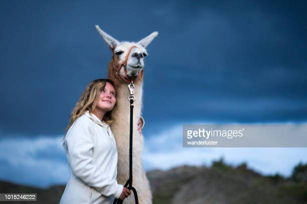 Teenage girl and a llama in mountains