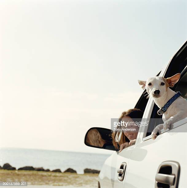 Teenage girl (17-19) and dog looking out car window, portrait