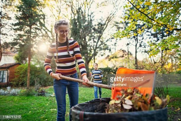 adolescente compostant des lames d'automne - humus photos et images de collection