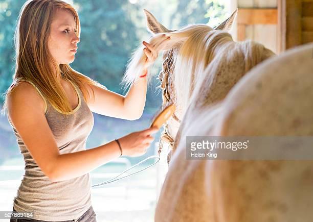 Teenage girl (16-17) grooming horse