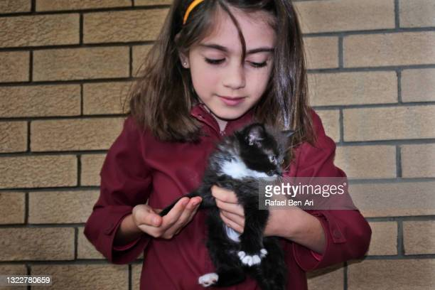 teenage girl holding a kitten - rafael ben ari stock-fotos und bilder