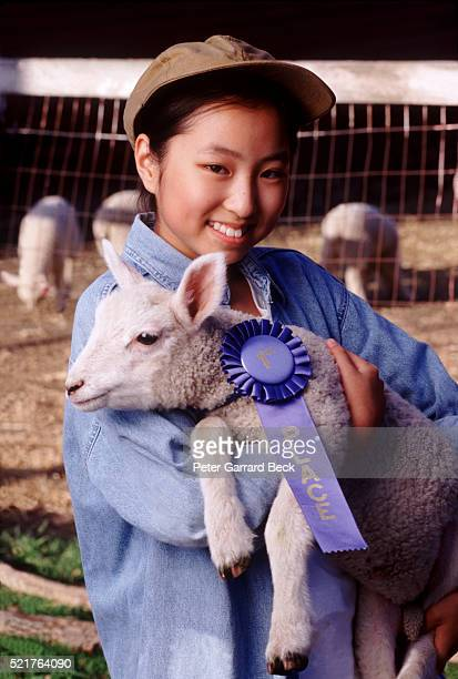 teenage girl holding prize-winning lamb - livestock show stock pictures, royalty-free photos & images