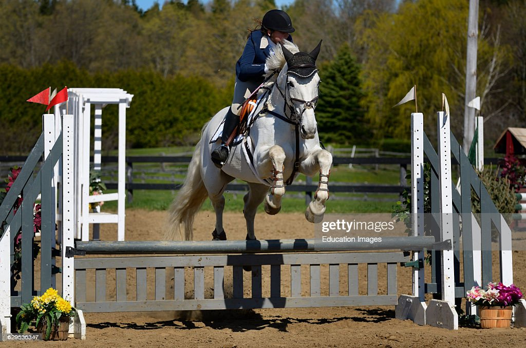 Teenage girl on Gray horse clearing a jump at equestrian show competition : News Photo