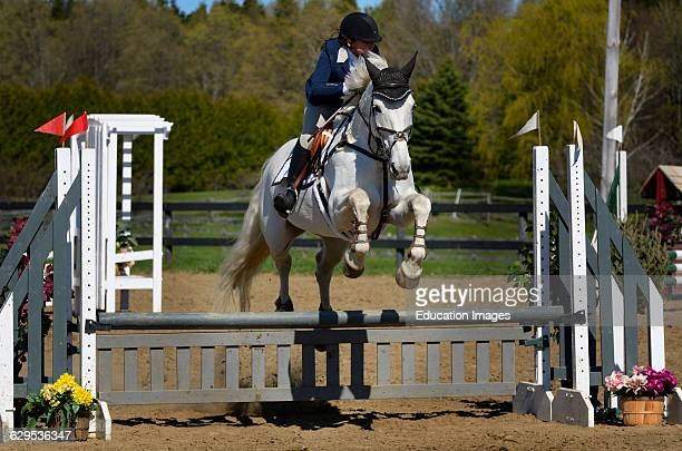Teenage girl on Gray horse clearing a jump at an outdoor equestrian show competition