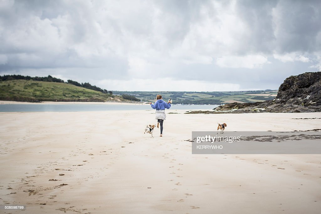 Teenage girl on the beach with dogs : Stock Photo