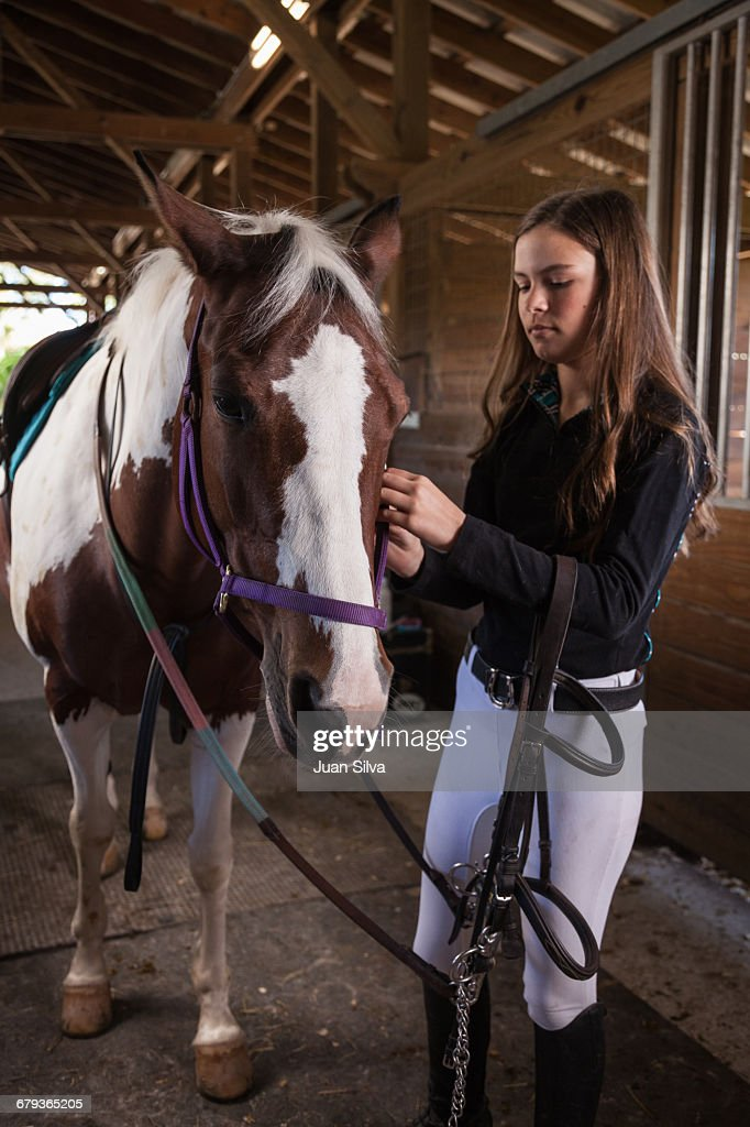 Teenage girl prepping horse in a stable : Stock Photo