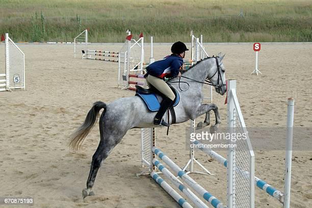teenage girl showjumping - 馬場馬術 ストックフォトと画像