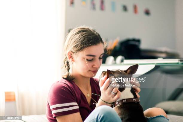 teenage girl snuggling with her dog - rebecca nelson stock pictures, royalty-free photos & images