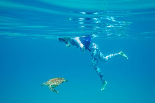 Teenage girl swimming in ocean with a turtle, Malaysia