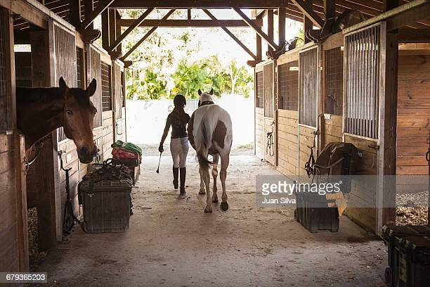 Teenage girl walking out horse from a stable
