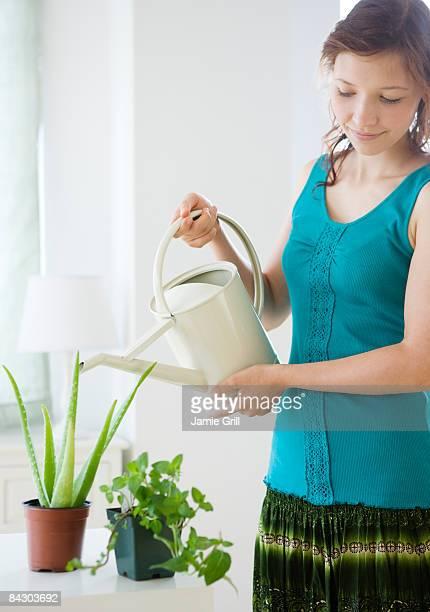 teenage girl watering houseplant - aloe vera plant photos et images de collection