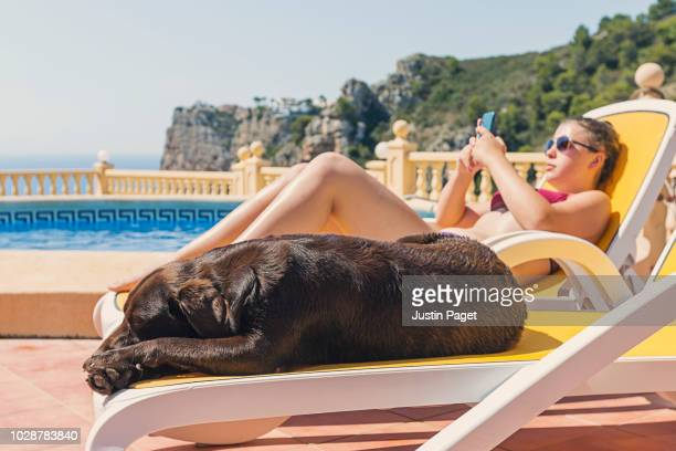 teenage girl with dog on sun loungers - hot spanish women stock pictures, royalty-free photos & images