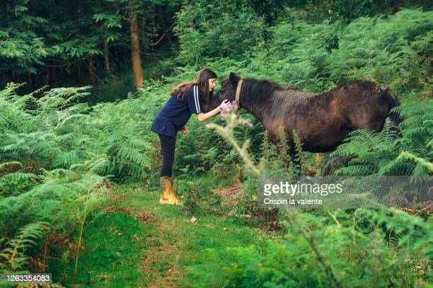 teenage girl with her black horse - reality fernsehen stock pictures, royalty-free photos & images