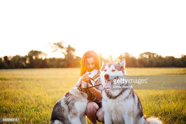 teenage girl with her dog - sled dog stock pictures, royalty-free photos & images