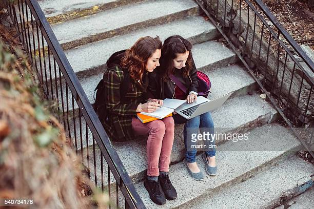Teenage girls studying on the lap top - copyspace