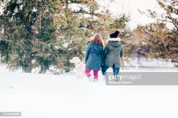 teenage girls talking labrador retriever for walk in the snow