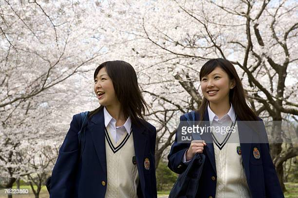 Teenage girls walking pathway lined with cherry trees, front view, Japan