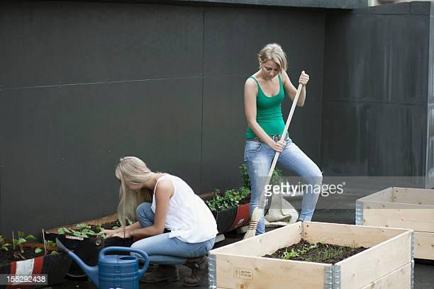 Teenage girls working in modern garden