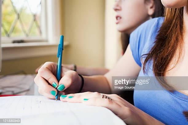Teenage girsl doing homework