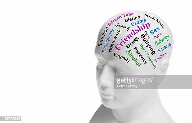 Teenage years choice phrenology head