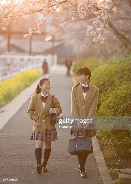 Teenagegirls walking from school under cherry blossom tree