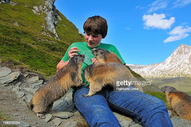 Teenager and Alpine Marmots