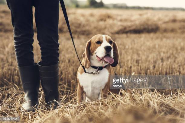 Teenager boy and his dog walking in the field