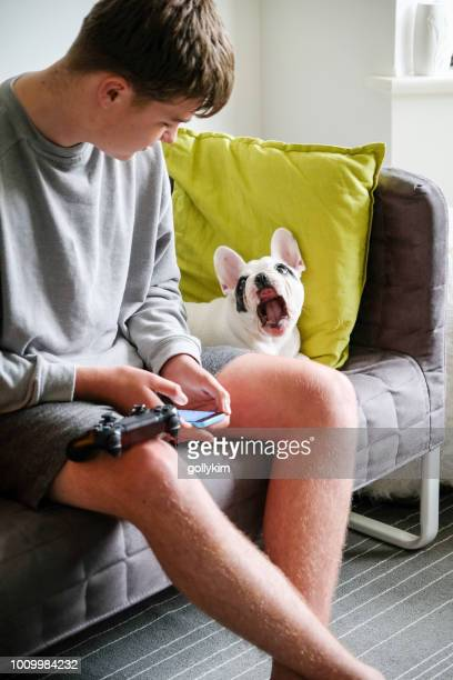 Teenager boy playing game on phone with French Bulldog puppy by his side, England