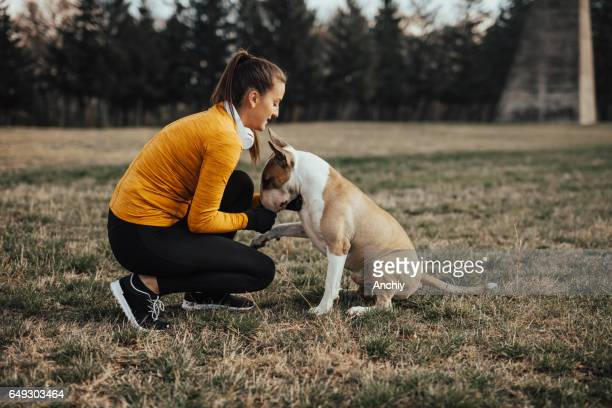 teenager caressing her bull terrier - bull balls stock pictures, royalty-free photos & images