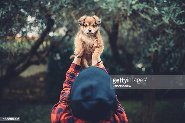 teenager girl holding a cute puppy - petite teen girl stock photos and pictures