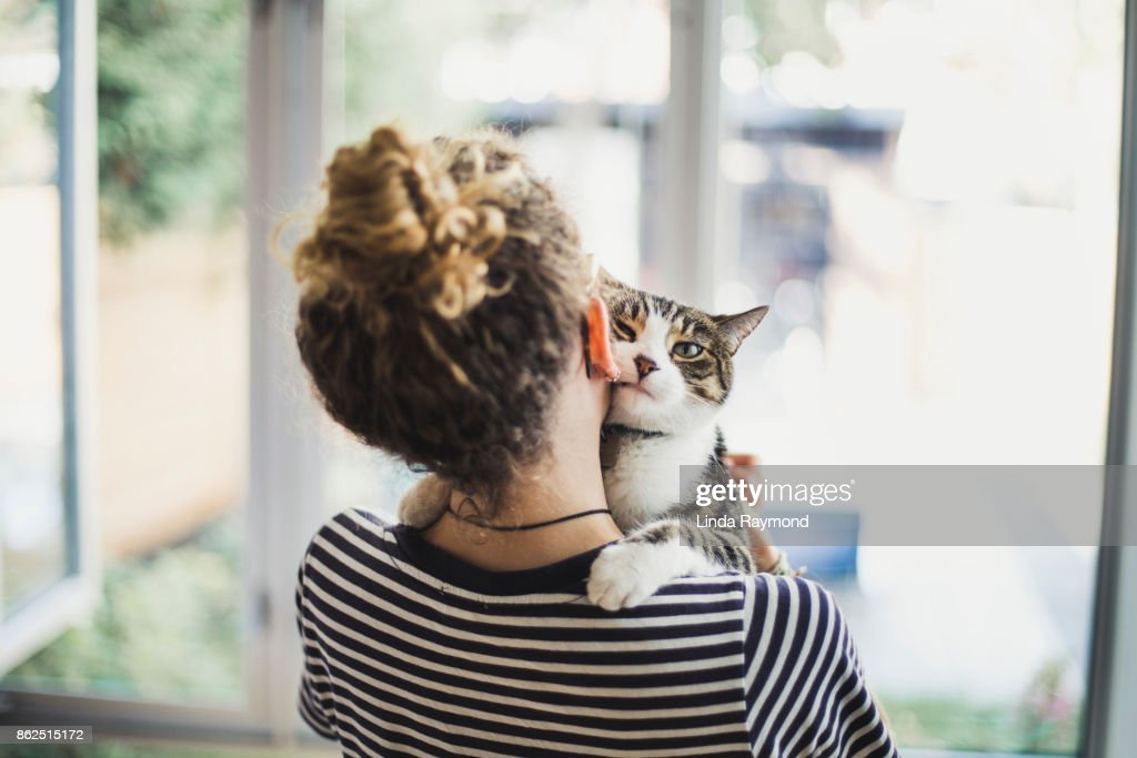 A teenager girl holding her cat : Stock Photo