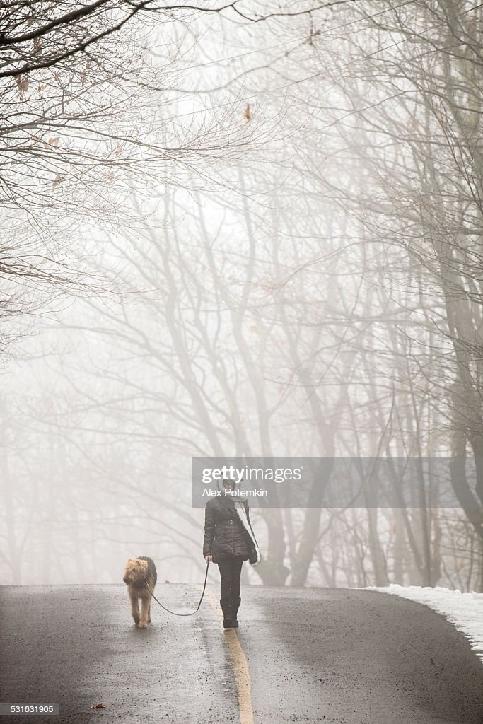 Teenager girl walking dog in the haze : Stock Photo