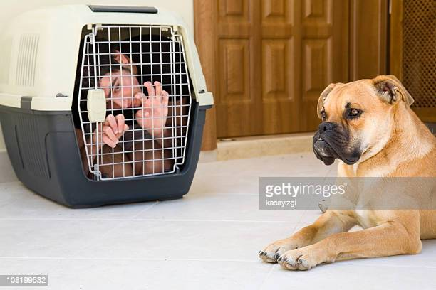 Teenager in Dog Kennel
