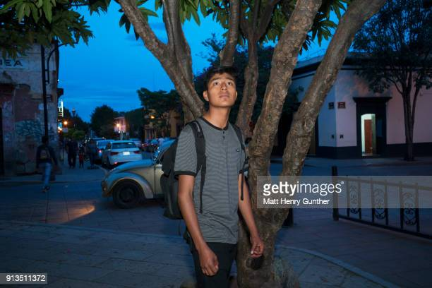 teenager looking up away from camera,street scene at night,flash illuminates tree and his face - henry street stock pictures, royalty-free photos & images