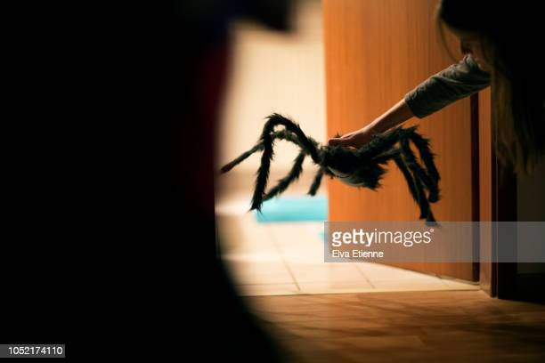 teenager placing large halloween spider decoration in a backlit doorway - naughty halloween stock photos and pictures