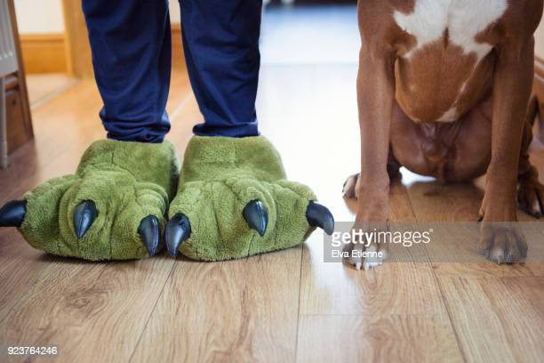 Teenager wearing green dinosaur feet slippers, standing next to pet dog