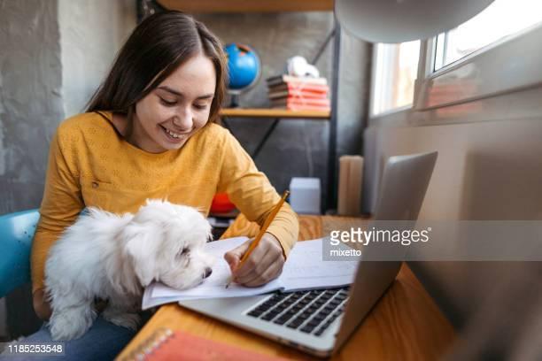 adolescente con cane maltese in grembo scrivendo in libro con matita - dog pad foto e immagini stock
