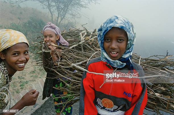 Teenagers collecting firewood in Eritrea 2004