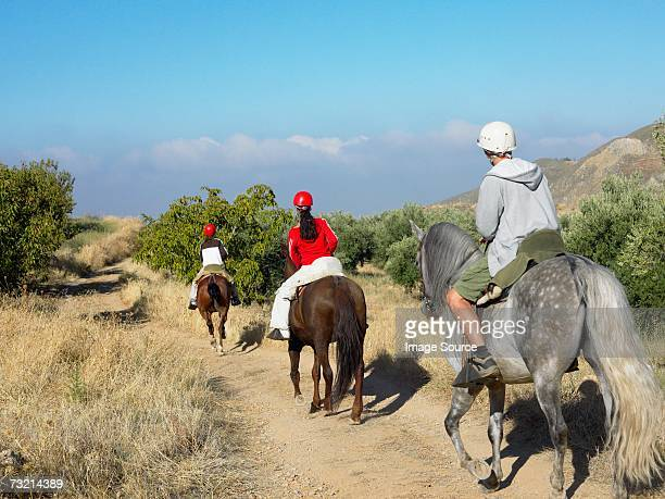 teenagers riding horses - andalusia stock pictures, royalty-free photos & images