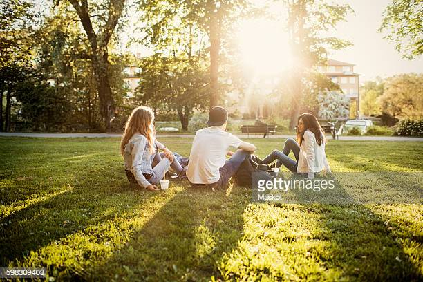 teenagers sitting on grass at park - park stock-fotos und bilder