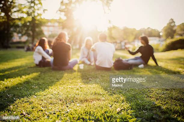 teenagers spending leisure time while sitting at park - public park stock photos and pictures